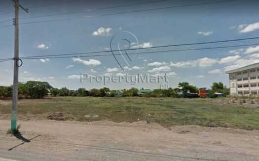 Lot for Sale in Cabanatuan City